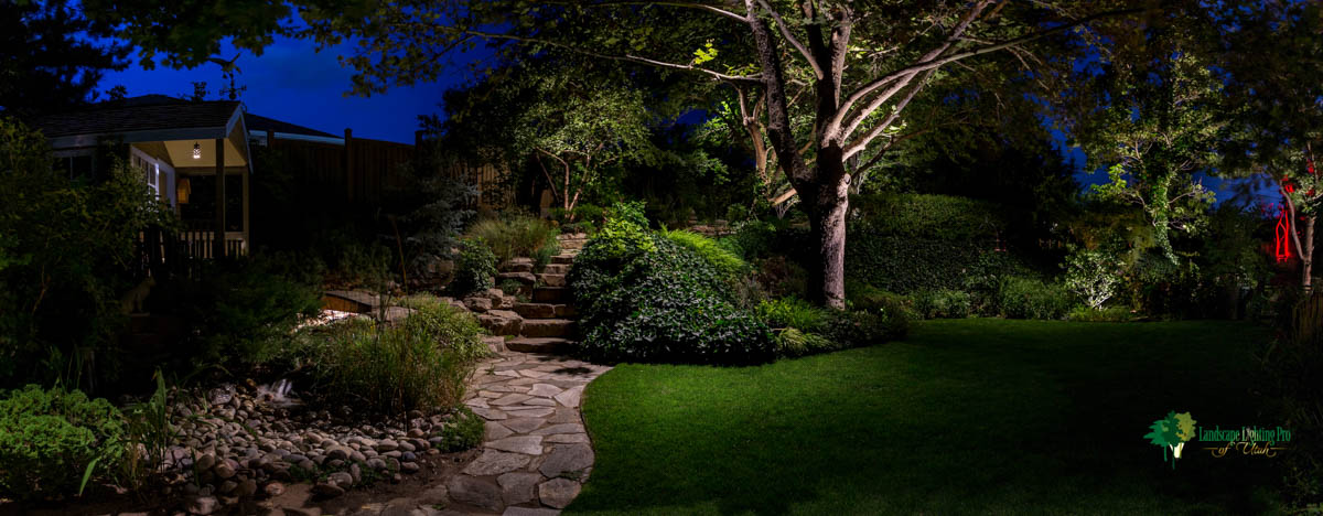 Back Landscape Lighting Design, Sandy Utah