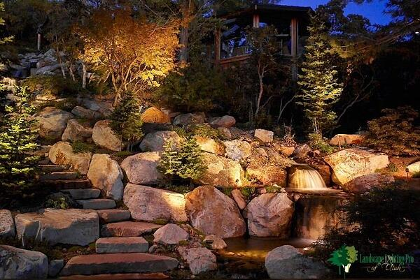 Japanese maple, pine trees and steps with lighting