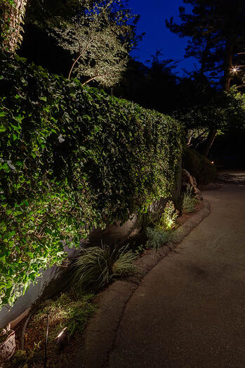Wall-wash-path-lighting-Holladay-Utah