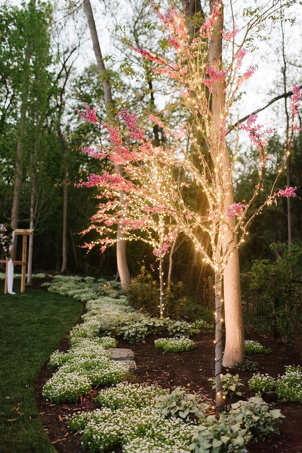 twinkle-lights-tree-wedding