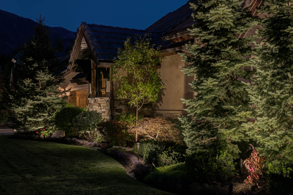 Security Tree Architectural Up Lighting Salt Lake City