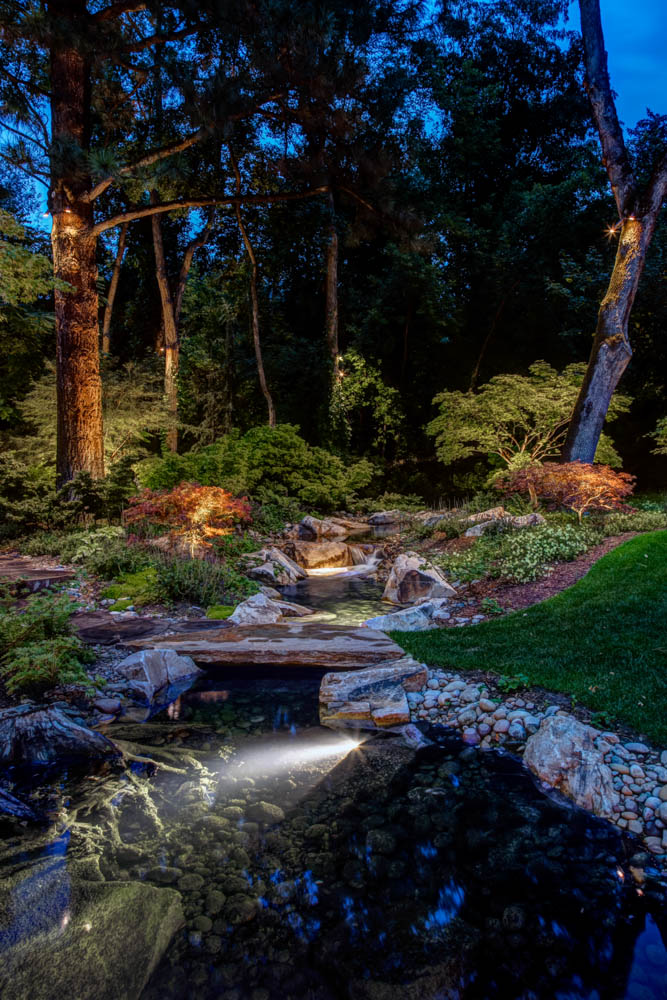 Pond Lighting Ideas