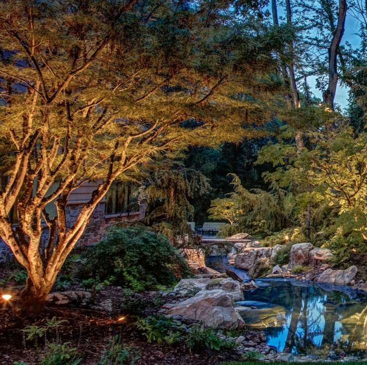 Pond-water-feature-lighting