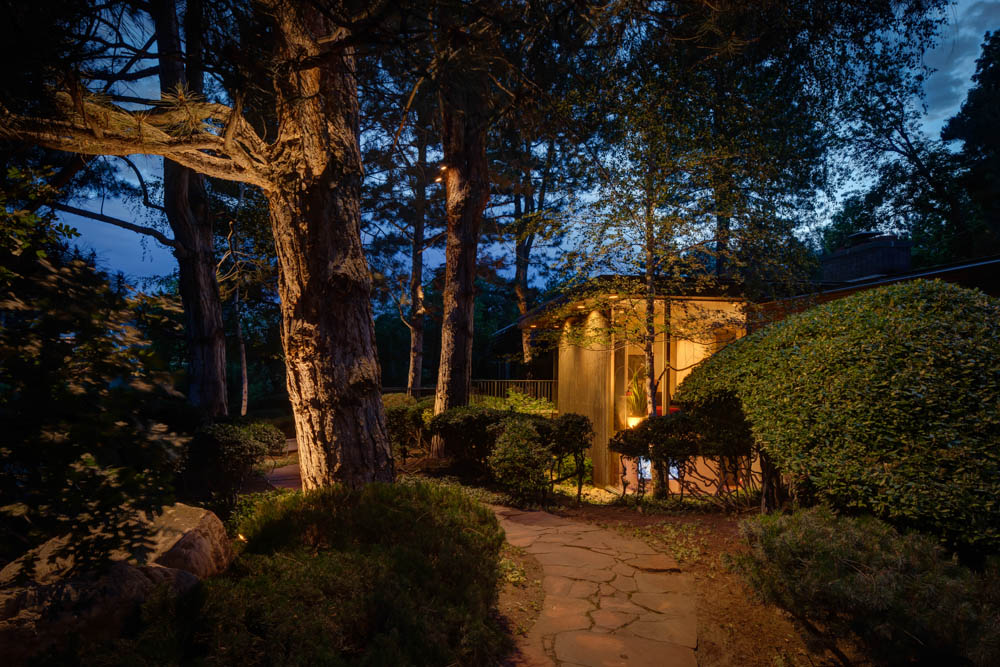 downlighting vs uplighting which landscape lighting do you need
