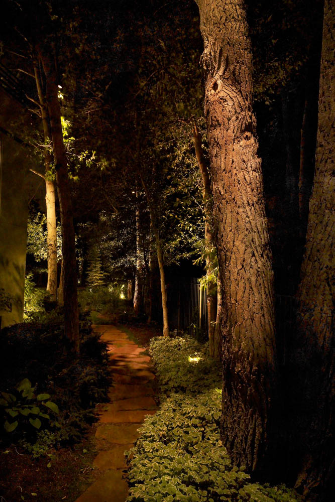 Pathway and Step lighting ideas