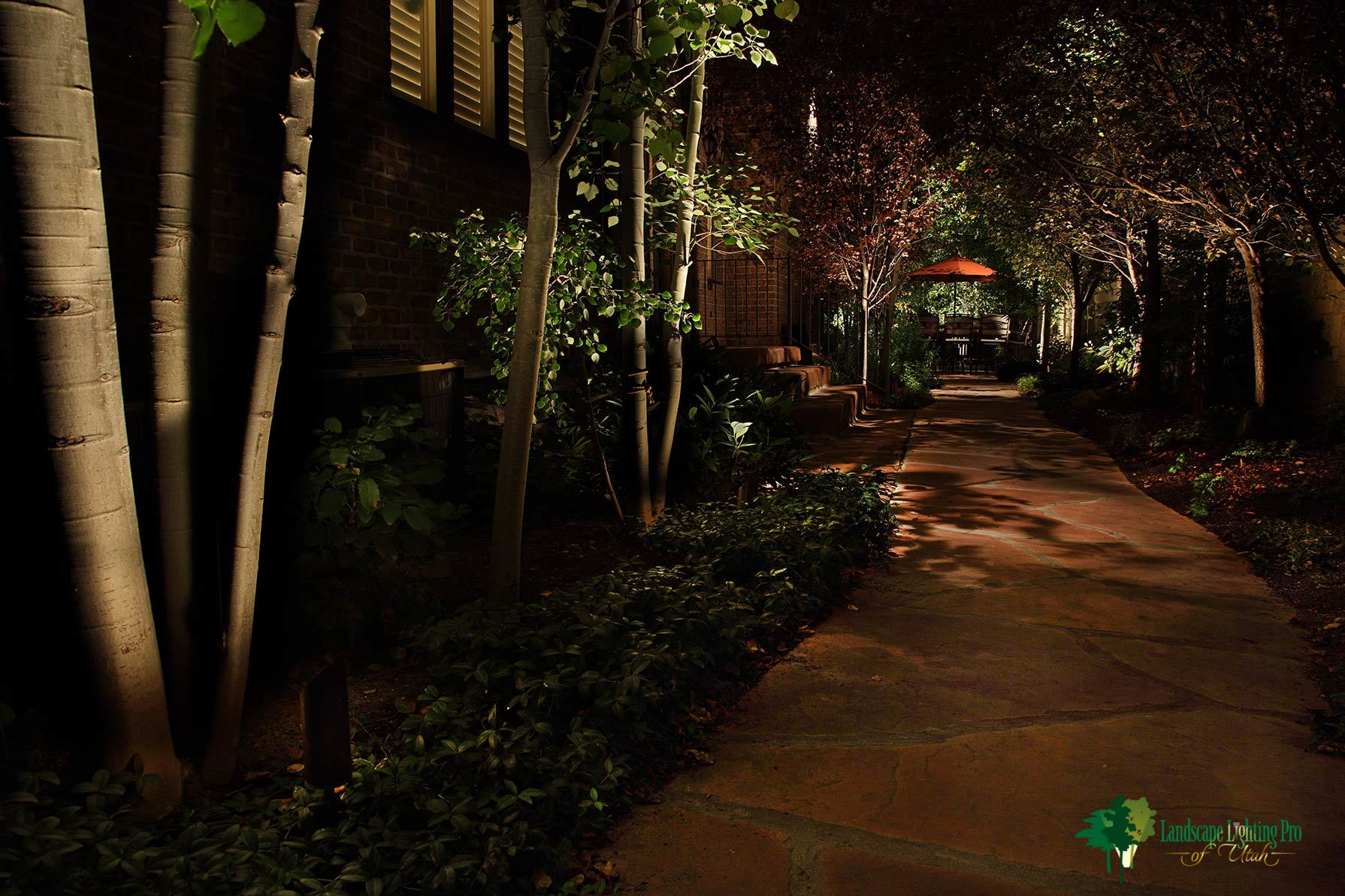 tree-and-pathway-lighting-sandy-utah.jpg